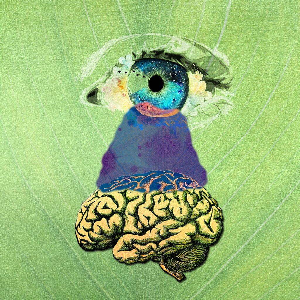 Observación de la Mente, Meditación
